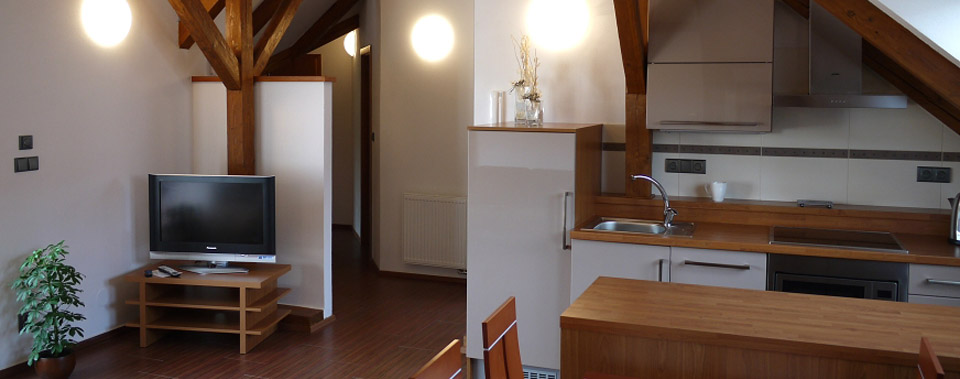 Five-bed apartment has a large living room with kitchenette.
